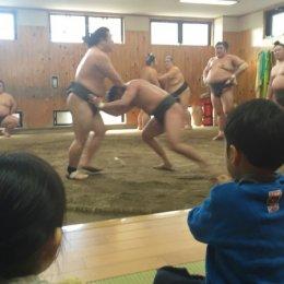 相撲の稽古を見学する子ども達