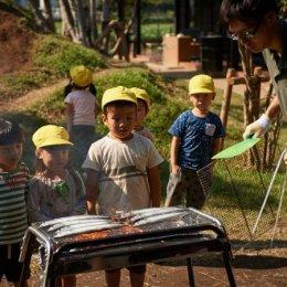 秋の味覚「秋刀魚」で学ぶ食育