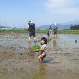 2歳児も初参加!南魚沼の大自然の中、親子で田植え体験を楽しみました。