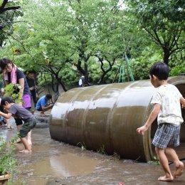 園庭の水たまりで遊ぶ子どもと職員