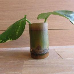 完成した竹のコップ