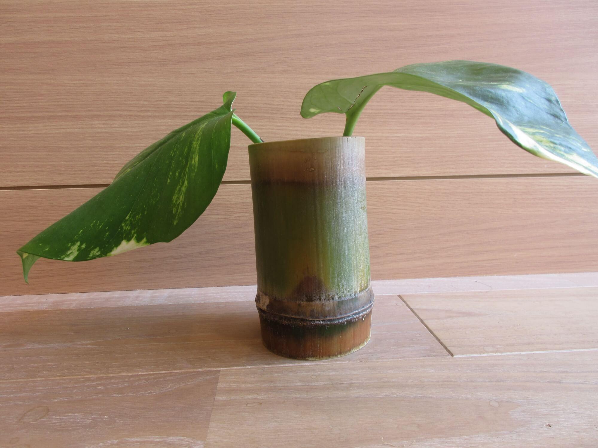 完成した竹の湯呑