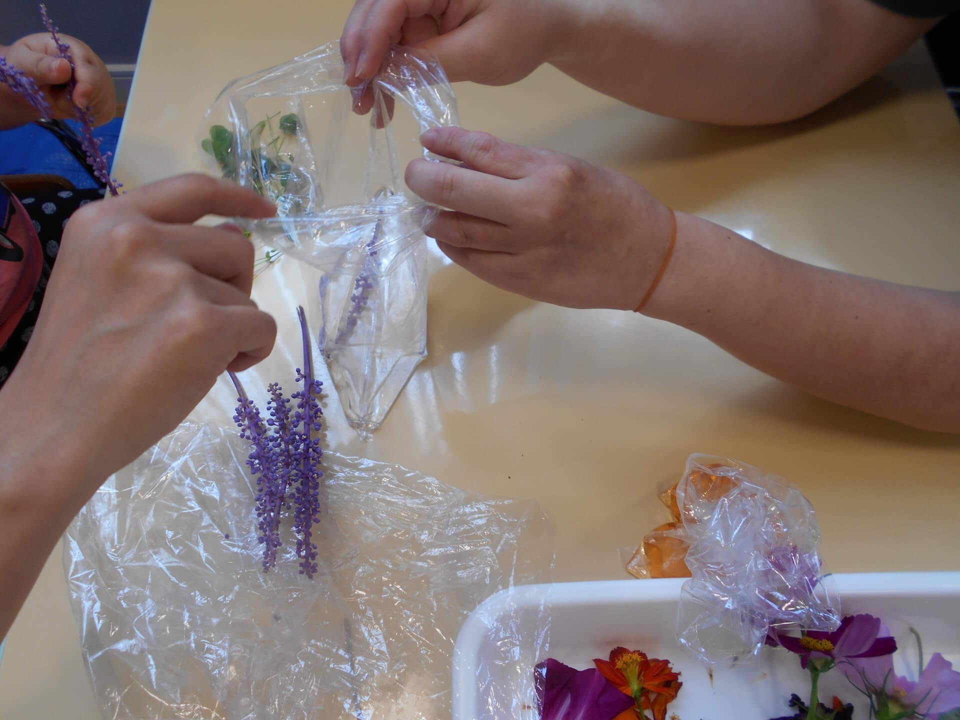 草花で色水作り