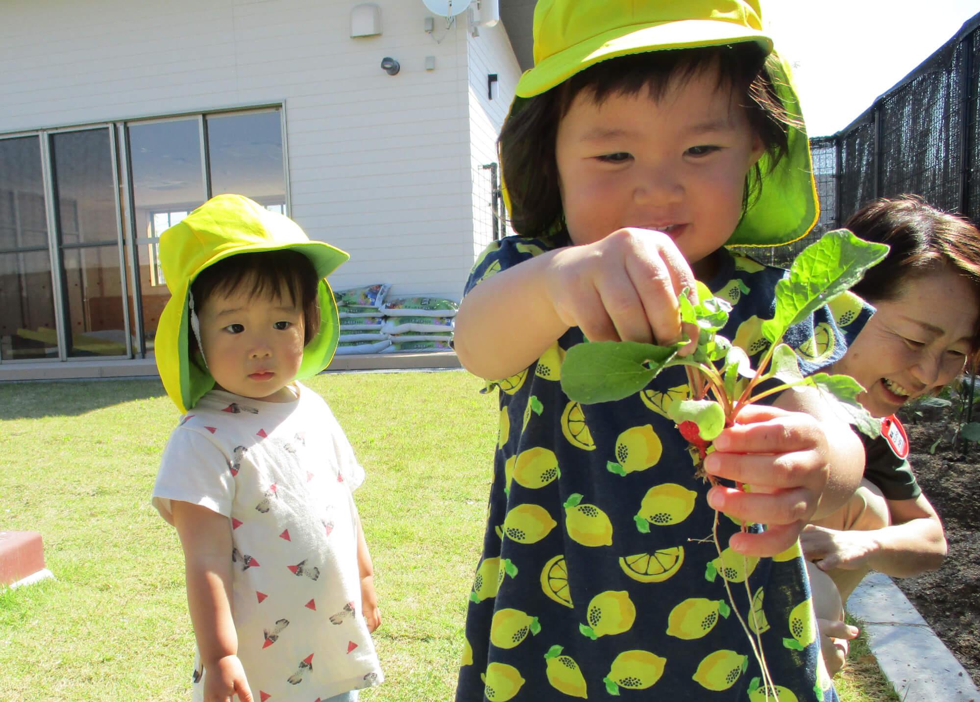 収穫した野菜を手に取る子ども