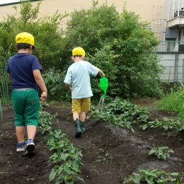 畑に水をまく子どもたち