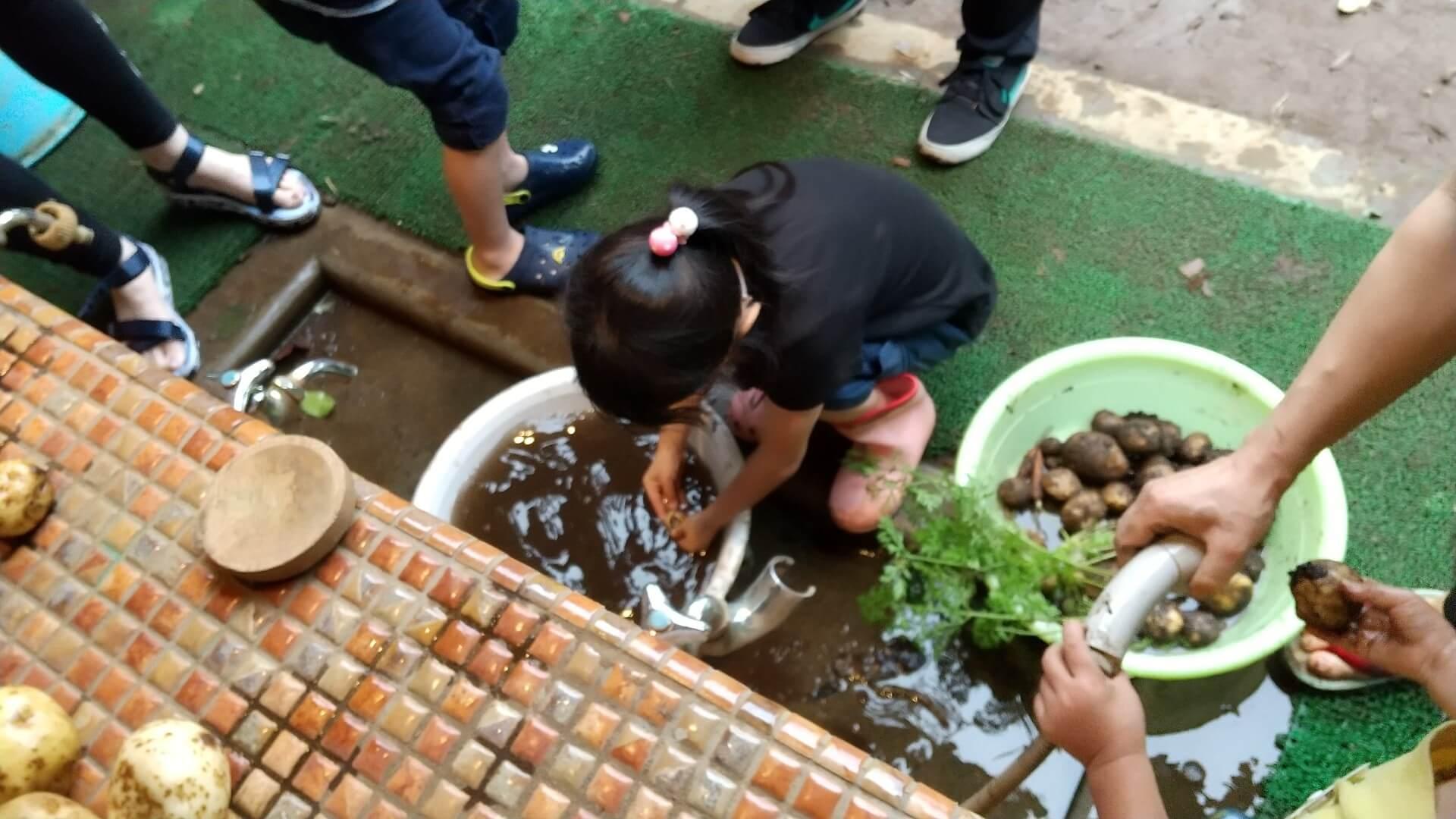 じゃがいもを洗う子ども