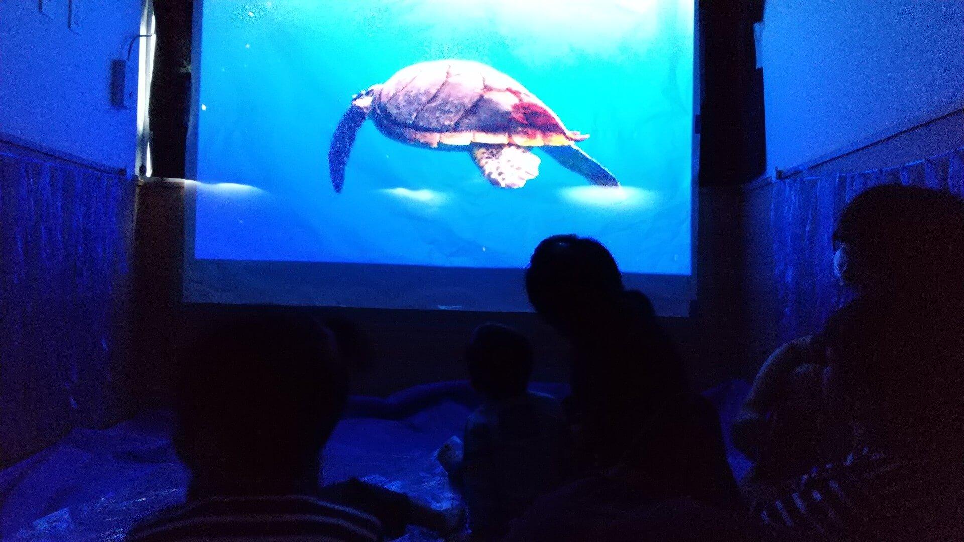 シアター水族館