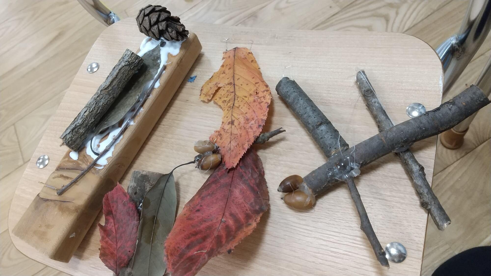 木の枝や落ち葉