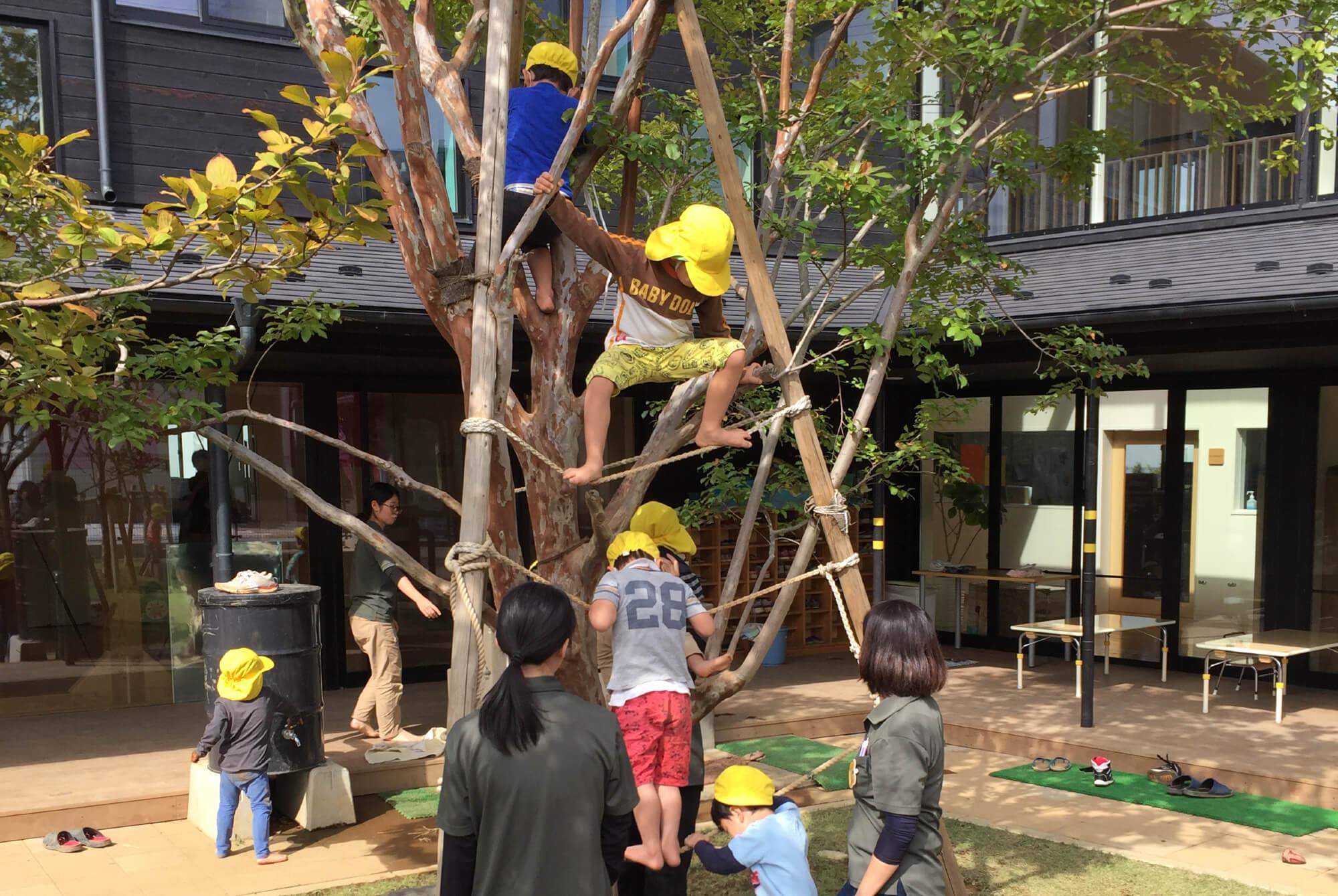 園庭で木登りする子どもたち