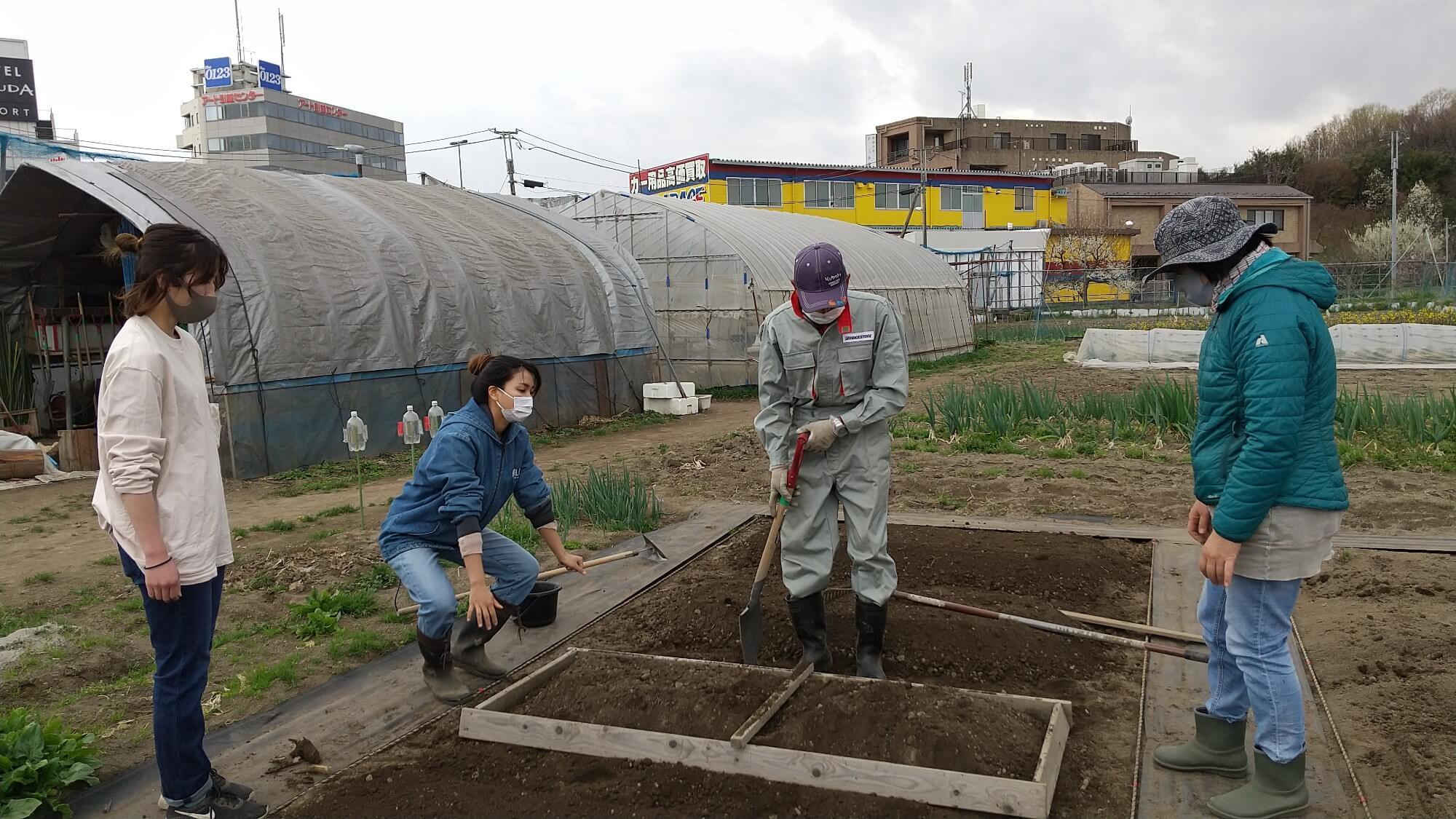 畝作りを教わる職員