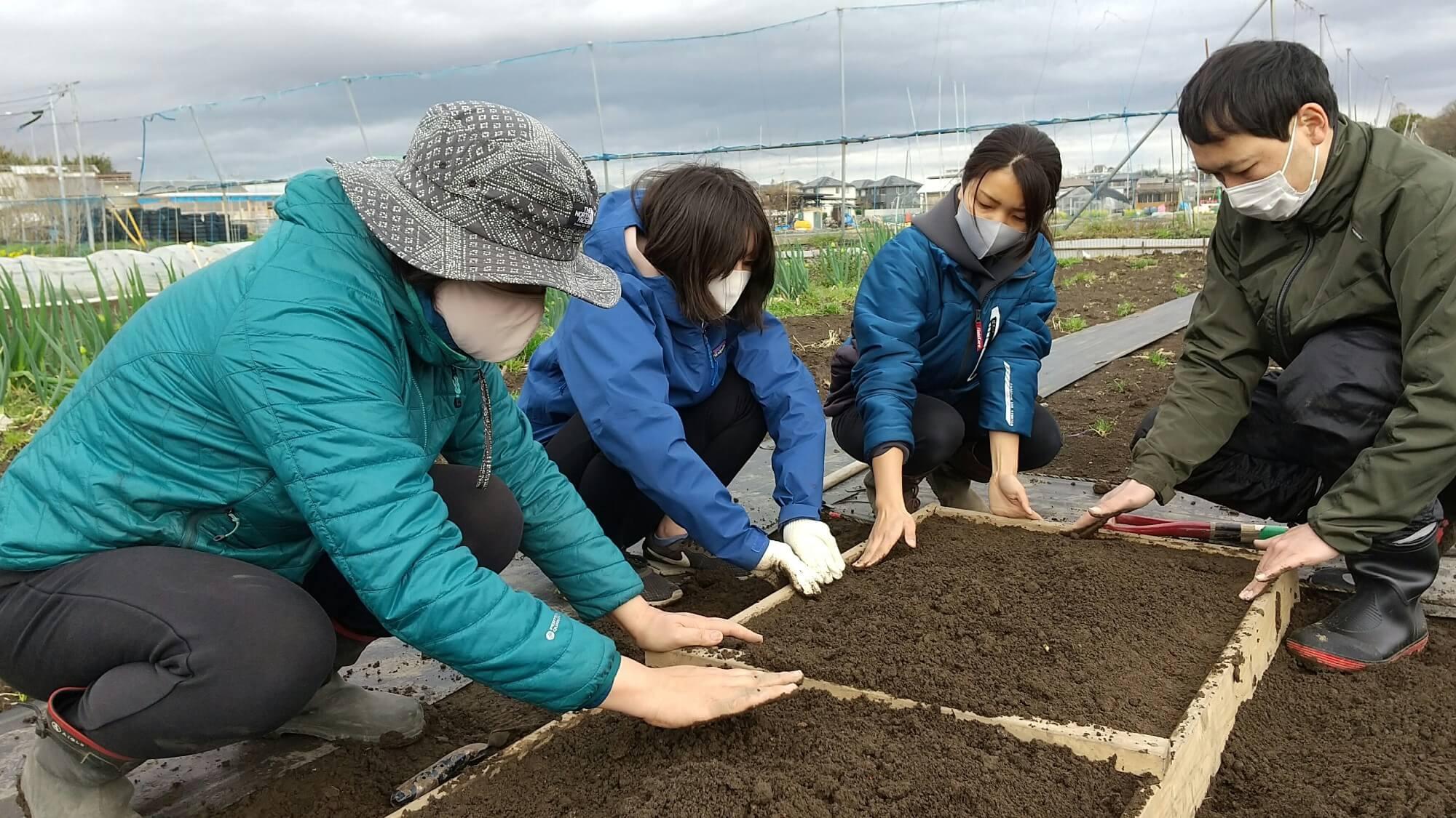 木枠の中の土を平らにする