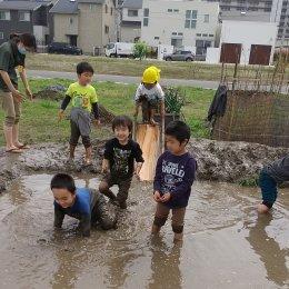 発達支援センターつむぎ浦和美園「隣の畑に田んぼができた」