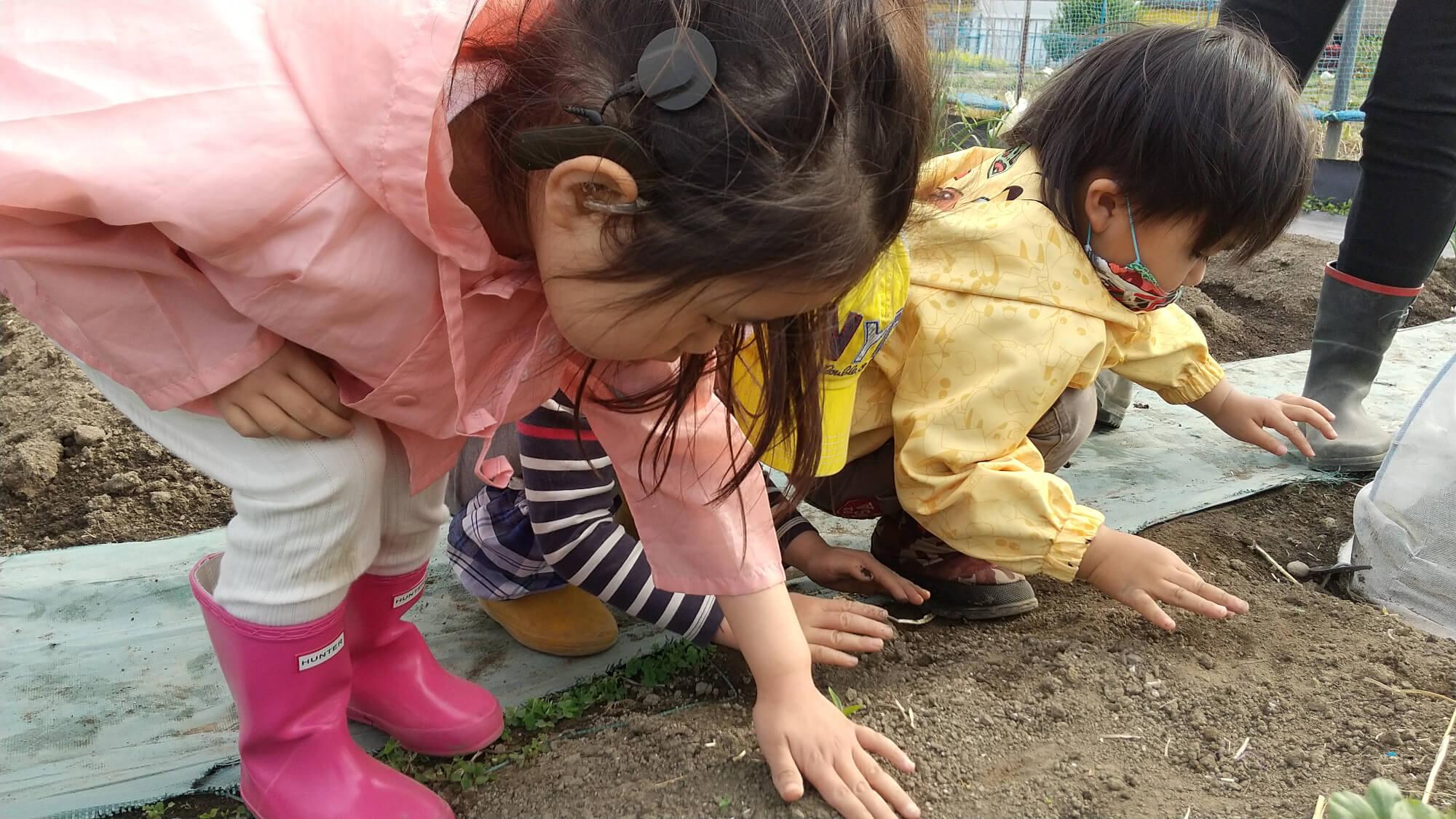 種を土に埋める子どもたち