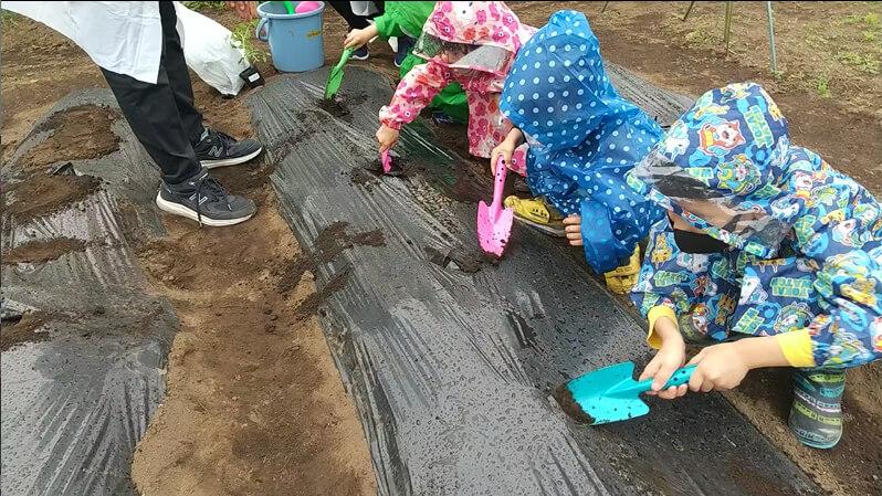 土を掘る子どもたち