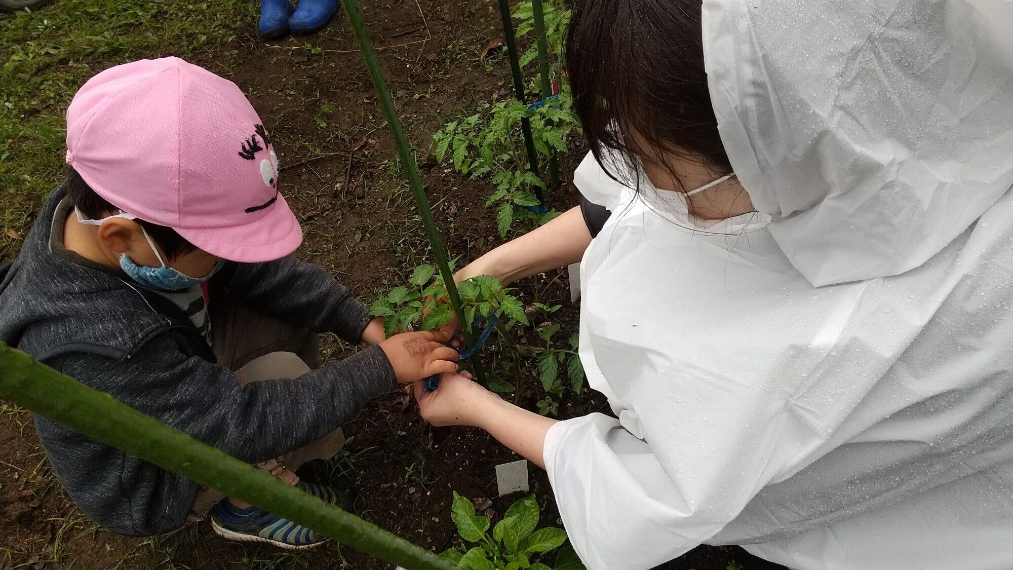 畑仕事中の子ども