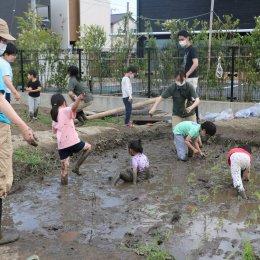 皆泥だらけになりました