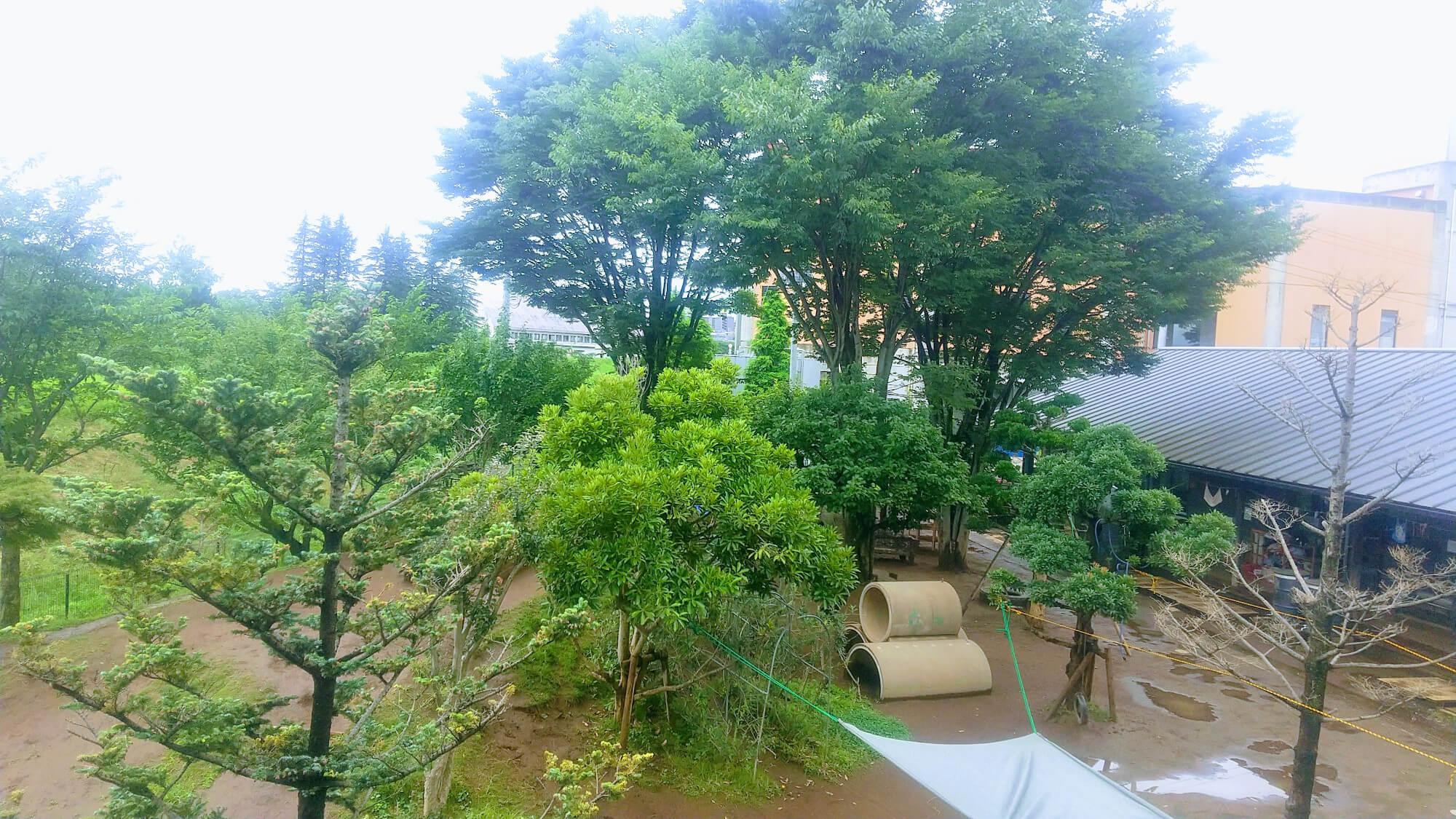 朝霞どろんこ保育園の園庭写真