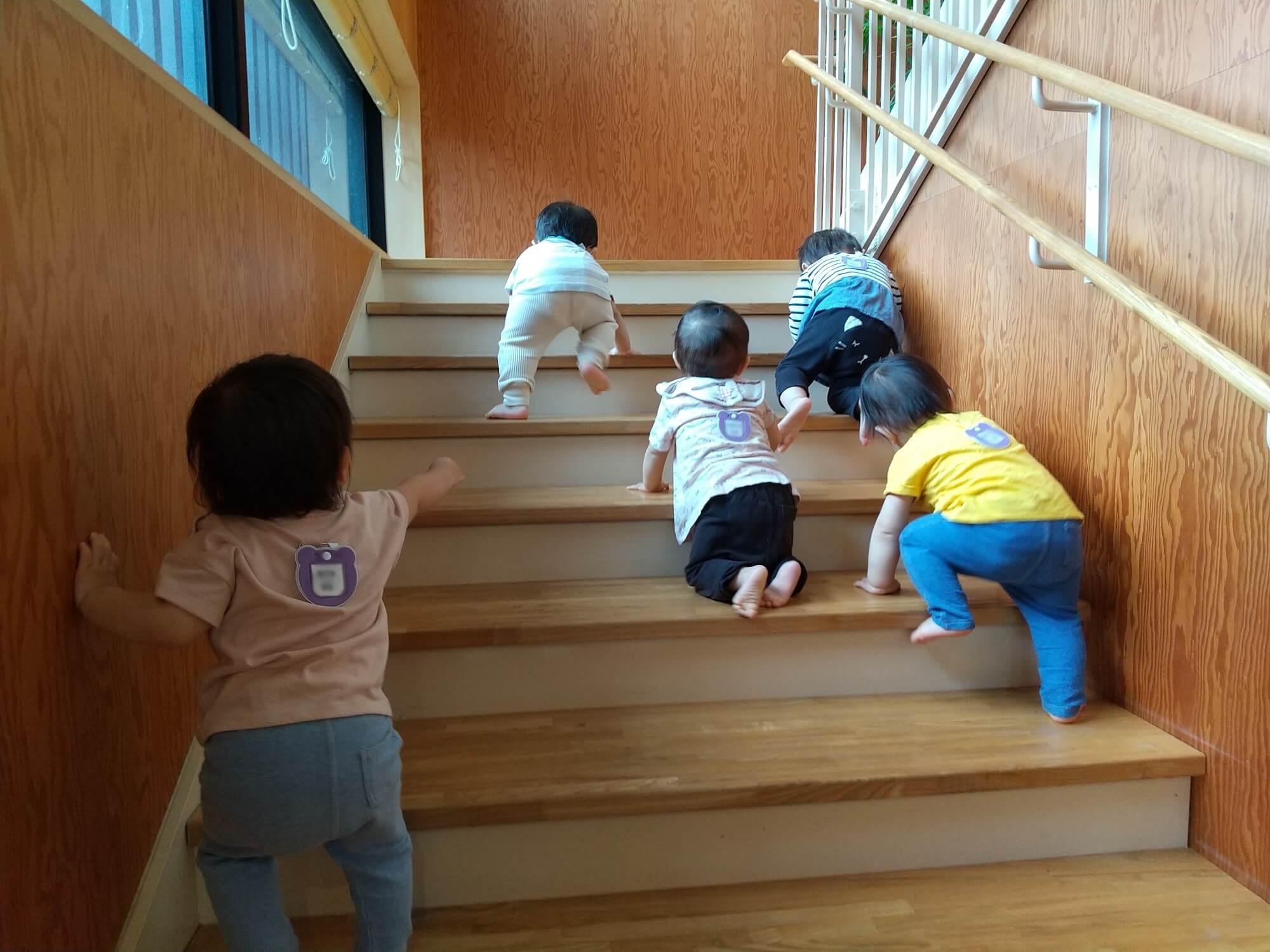 階段をハイハイしながら登る子どもたち