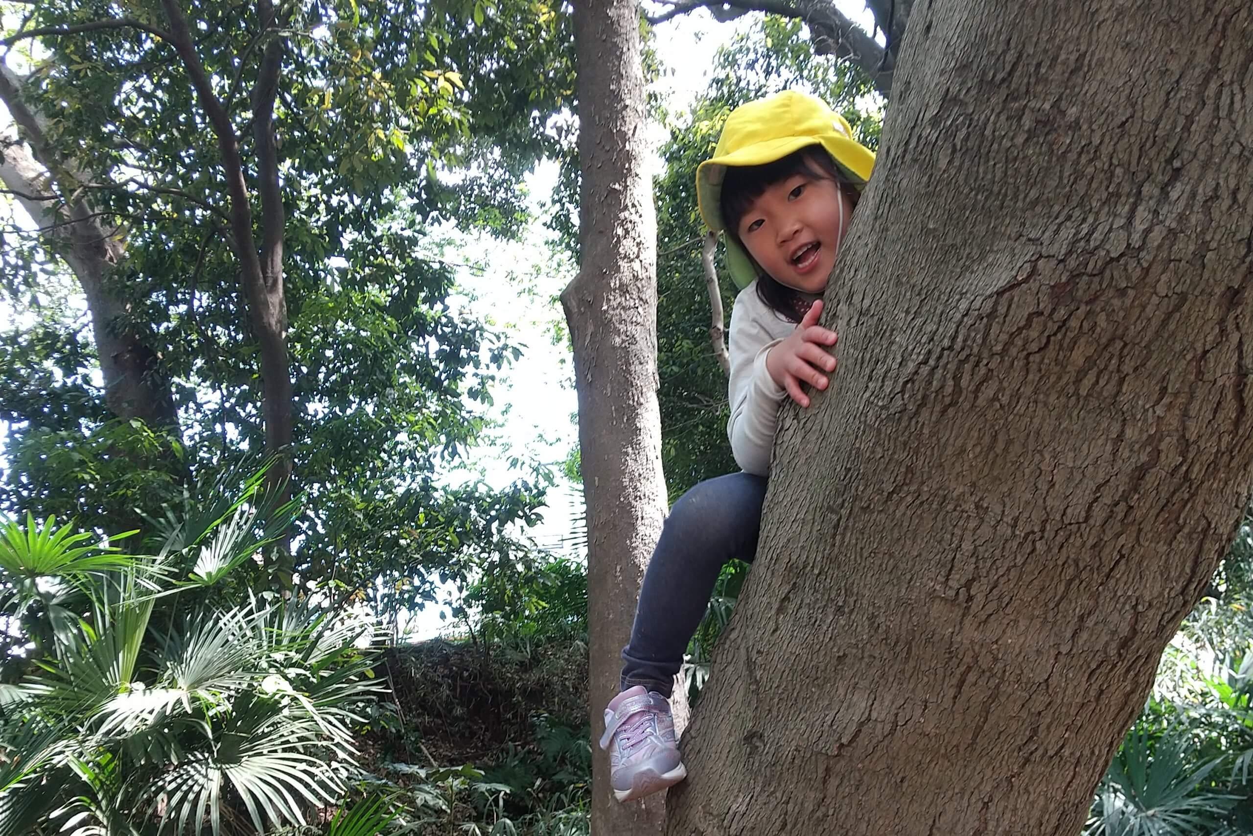 木登りをする子ども