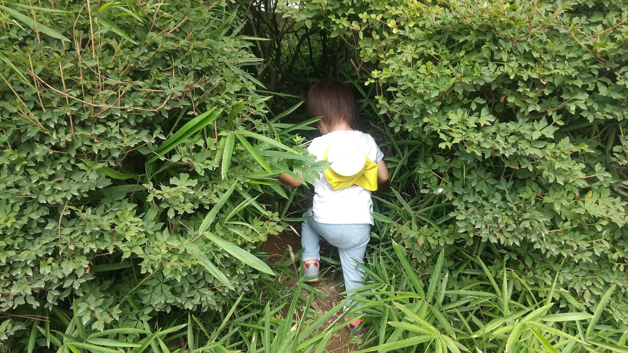 自然の中で遊ぶ子ども