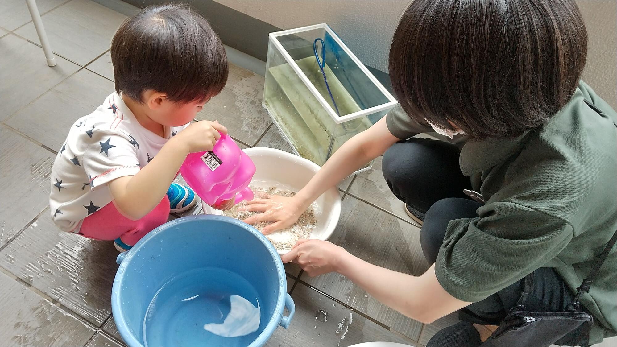 水槽の掃除をする様子