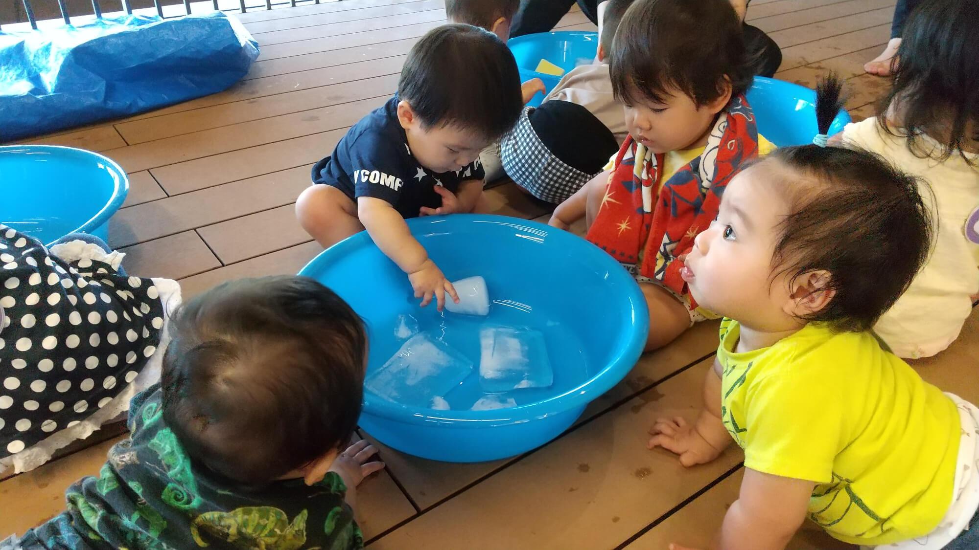 洗面器の中の氷に興味津々の子どもたち