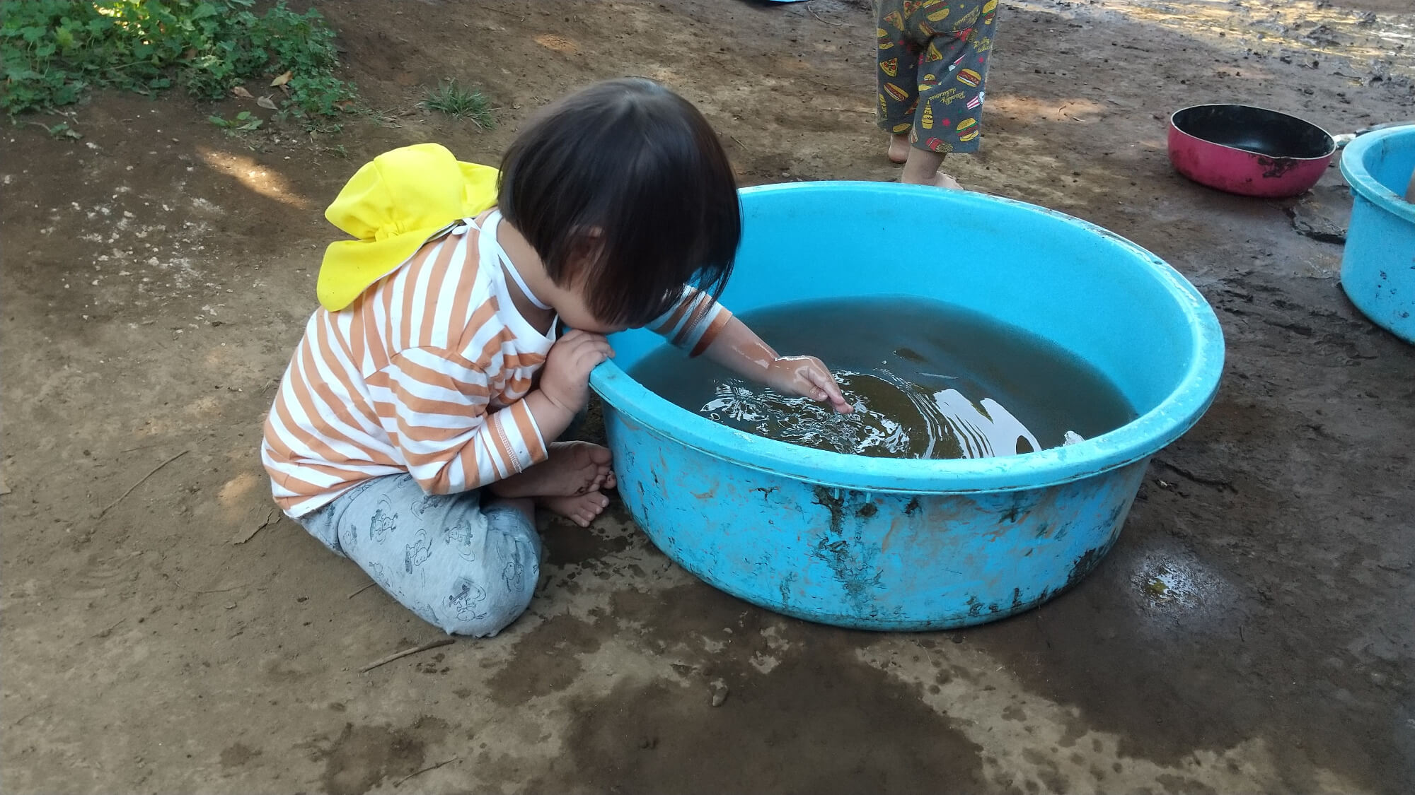たらいに溜めた水で遊ぶ子ども