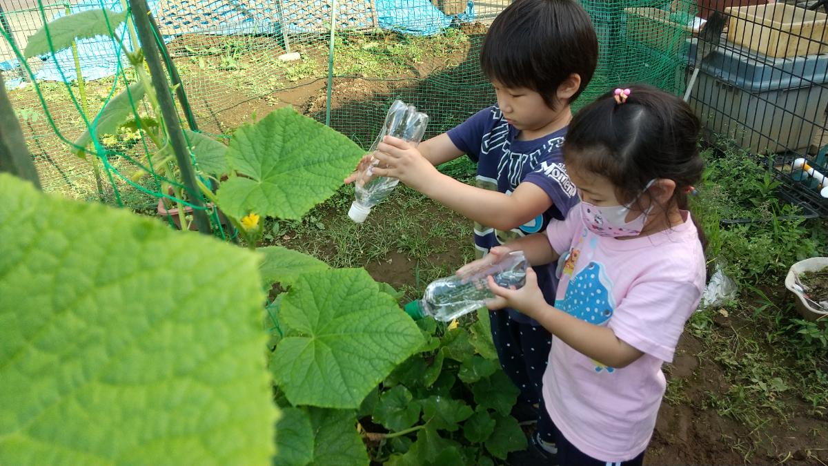 水やりする子どもたち