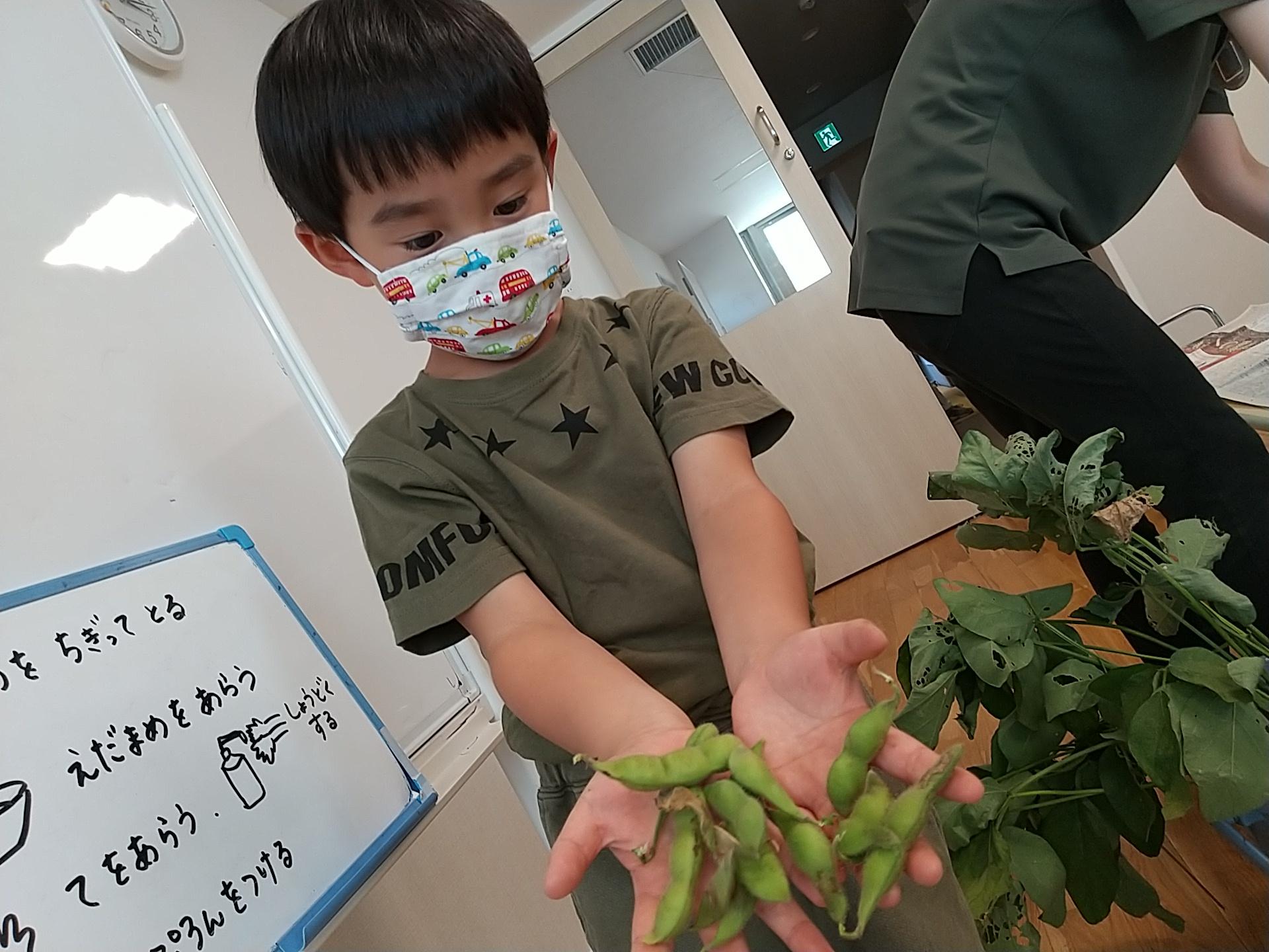 とれた枝豆を見せる子ども